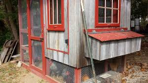 Building Backyard Chicken Coop Build A Backyard Chicken Coop Allmorgan