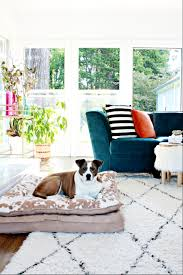 What Is A Shag Rug Why We Love Our Moroccan Shag Rug