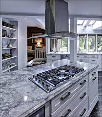 Home Depot Instock Kitchen Cabinets Stock Cabinets Home Depot Large Size Of Kitchen Cabinets Reviews