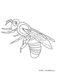 insect coloring pages 30 free insects bugs coloring pages