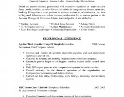 professional resume template accountant cv document sle resume templates grandessays law essays custom essay writing