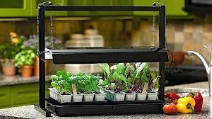 best grow lights for vegetables best indoor garden lights indoor grow lights start seeds best with