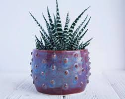 modern cactus ring holder images Cactus planter etsy jpg