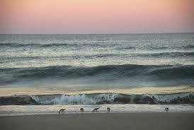 charleston u0027s best beach vacation rentals dunes properties