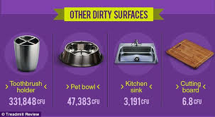 Bacteria In Kitchen Sink - your plastic water bottle could be harbouring more germs than a