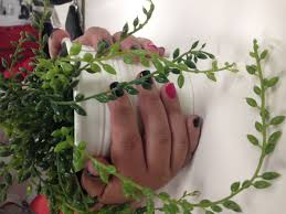botanic nail u2014 program