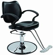 Affordable Salon Chairs Amazon Com Bestsalon Classic Hydraulic Barber Chair Styling