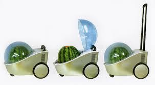 watermelon cooler heater