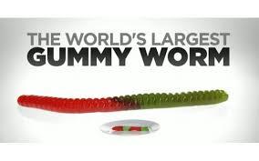 largest gummy worm 101qs