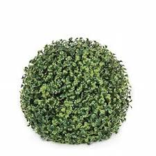 Outdoor Topiary Trees Wholesale - we the leading source of live topiary plants u0026 trees animal