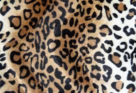 leopard fabric leopard fabric texture by beckas on deviantart