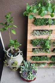decorations inspiring interior wall garden design with wooden