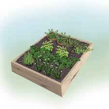 Herb Garden Layout Fresh And Handy 4 X 4 Foot Herb Garden Bonnie Plants