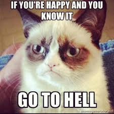 Mad Kitty Meme - angry memes tumblr image memes at relatably com