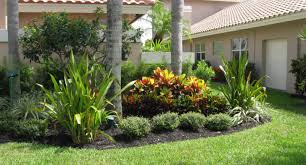 florida backyard ideas backyard ideas for landscaping with palm trees front yard