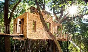 treehouse inhabitat green design innovation architecture