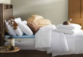 Home Design Down Alternative Color Comforters Wayfair Basics Wayfair Basics All Season Down Alternative