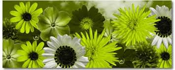 Lime Green Flowers - lime green flowers on canvas digital canvas prints