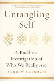 amazon com untangling self a buddhist investigation of who we