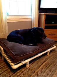 Cheap Dog Beds For Sale Diy Elevated Dog Bed Full Image For Beautiful Dog Bed Drawer 104