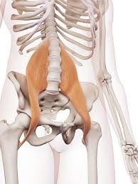 Leg Pain Going Down Stairs by Pelvic Region Chape Personal Trainer