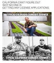 Anonymous Meme - anonymous meme slayer dude grows