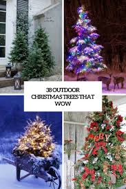 38 outdoor trees that wow digsdigs