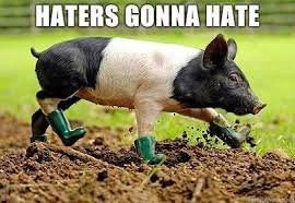 Hater Gonna Hate Meme - memes what are the best haters gonna hate images quora