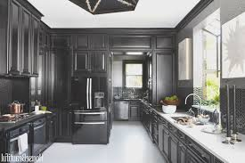 interior designer kitchen kitchen view best designer kitchens home design planning best