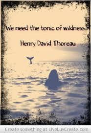 130 best henry david thoreau quotes images on thoreau