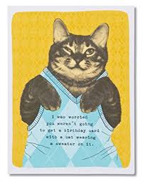 Cat Birthday Cards Amazon Com American Greetings Funny Sweater Cat Birthday Card
