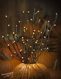Led Branch Centerpieces by 25 Best Twig Lights Ideas On Pinterest Old Window Ideas Window