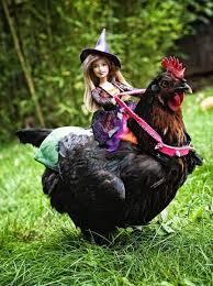Toddler Chicken Halloween Costume 67 Halloween Chicken Images Chicken Egg Art