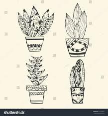 vector collection tropical plants pot zentangle stock vector