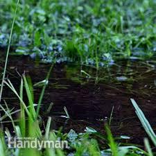 Backyard Drainage Ideas How To Achieve Better Yard Drainage Family Handyman