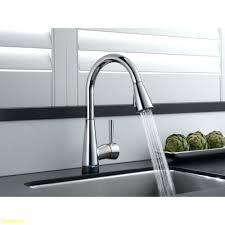 kitchen faucets ottawa kitchen faucet clearance canada faucets salem oregon fixtures nh
