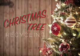 how to recycle your christmas tree kellogg garden products
