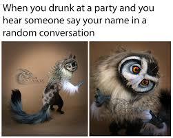 Persian Cat Meme - for your pcrg meme needs
