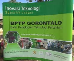 wakil gubernur launching produk bio industri padi kawasan terpadu