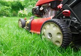lawn care gallagher landscaping braintee scituate