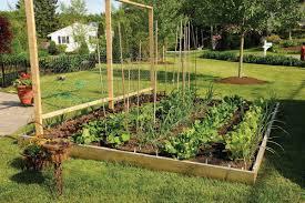 raised garden bed ideas vegetables home outdoor decoration