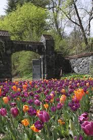 Asheville Nc Botanical Garden by 208 Best Biltmore Images On Pinterest Biltmore Estate Asheville