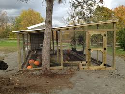chicken coop and run pictures with simple chicken house