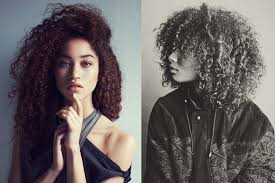 styles for mixed curly hair mane addicts manespiration mixed hair 101 mane addicts
