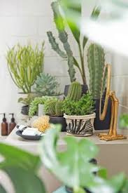 Urban Jungle Living And Styling by Urban Jungle Living And Styling With Plants Book Review Cas