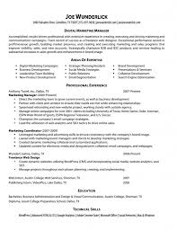 Web Resume Examples by Marketing Resume Website Job Sample Resumes