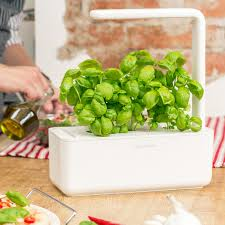refill 3 pieces lettuce click and grow touch of modern