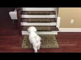 non slip bullnose carpet stair treads youtube