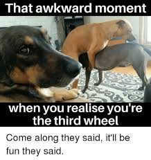 3rd Wheel Meme - 25 best memes about the third wheel the third wheel memes