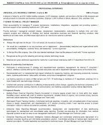 program manager resume objective examples project manager resume